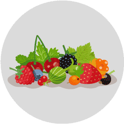 SOME HEALTHY FOODS - FRUITS
